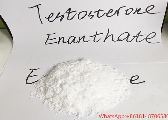 China 99% Purity Testosterone Raw Powder Test Enan For Bodybuilding Legal Anabolic supplier