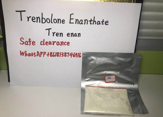 China 99% pure Trenbolone Enanthate Powder Recommended professional bodybuilders supplier