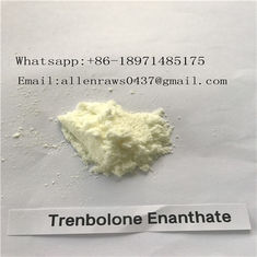 China Trenbolone Enanthate Powder , Injectable Legal Steroids For Man Cutting Cycle supplier