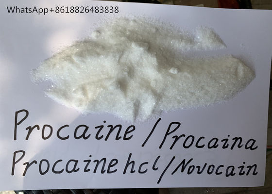 China Procaine Hcl Raw Powder Local Anesthetic Powder Safely Through European Customs factory
