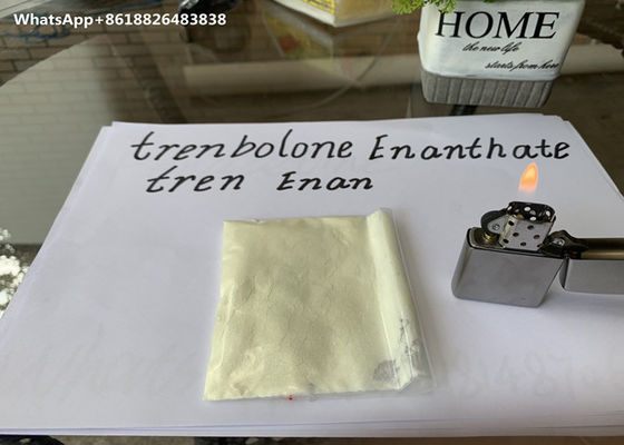 China Trenbolone Enanthate Powder , Injectable Legal Steroids For Man Cutting Cycle distributor