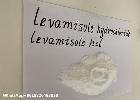 China Levamisole Hydrochloride Pharmaceutical Raw Materials Soluble Powder 99% Purity factory