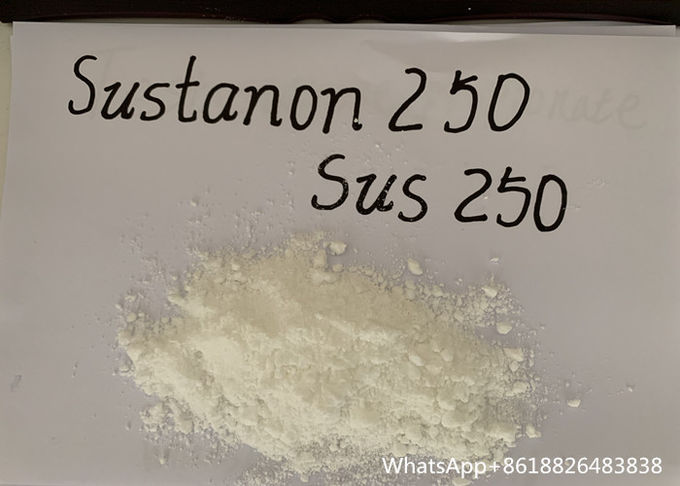 Sustanon 250 Testosterone , SUS 250 Raw Powder And Injectable Oil