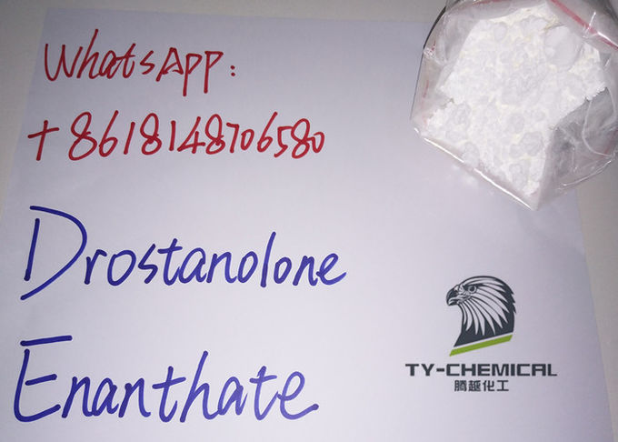 Drostanolone Enanthate Raw Steroid Powders Masteron Dros Enan Recipe Fitness Use
